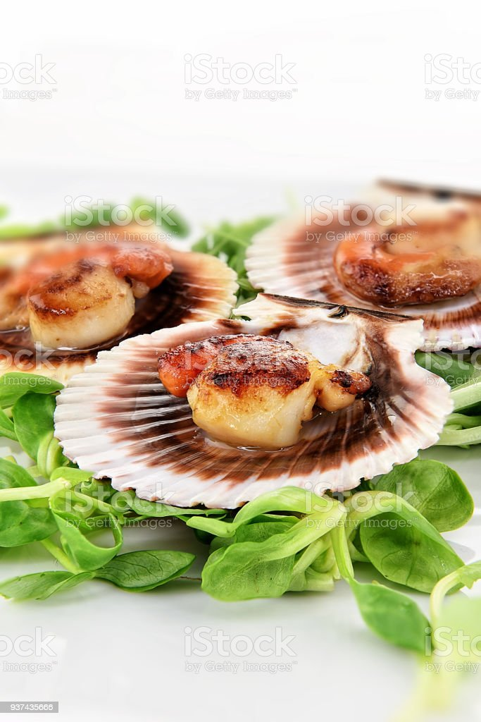 Grilled King Scallops stock photo