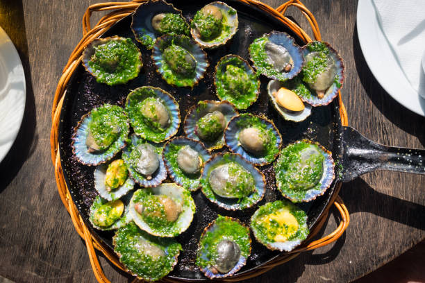 grilled limpets with green mojo, typical avocado in lanzarote, canary island - lapa imagens e fotografias de stock