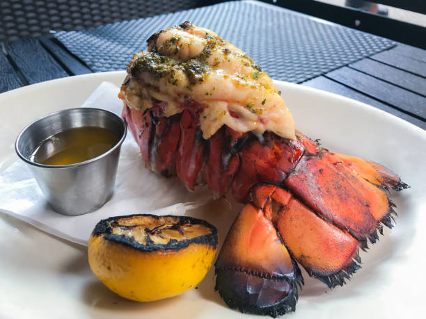 Grilled lobster tail. stock photo