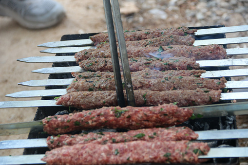grilled meat on the grill