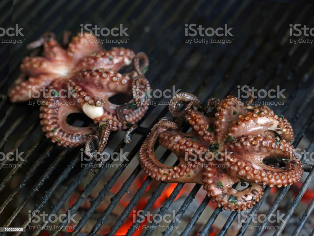 grilled octopus, fish is cooking on a grill, close up - Zbiór zdjęć royalty-free (Atrament)
