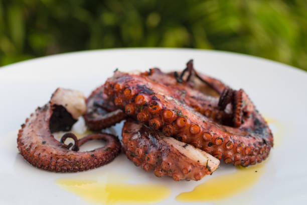 Grilled octopus on plate stock photo