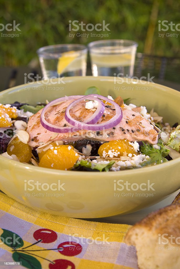 Grilled Salmon Gourmet Spring Salad, Healthy Fish Fillet & Fresh Vegetables royalty-free stock photo