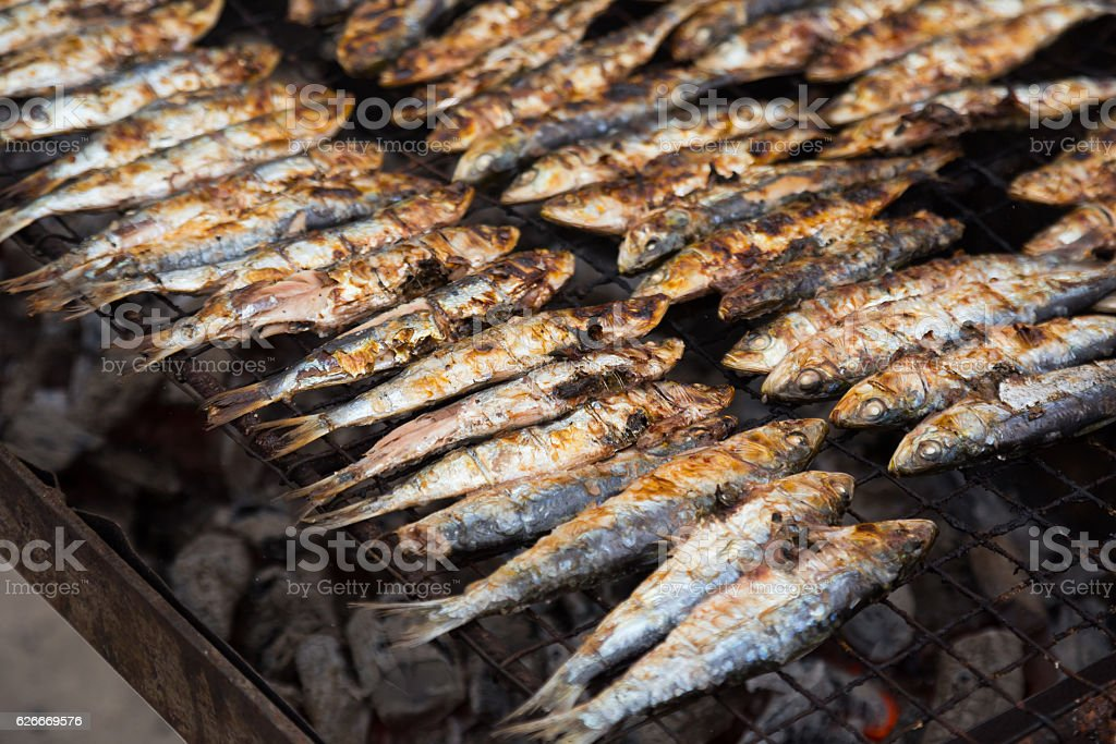 grilled sardinada stock photo