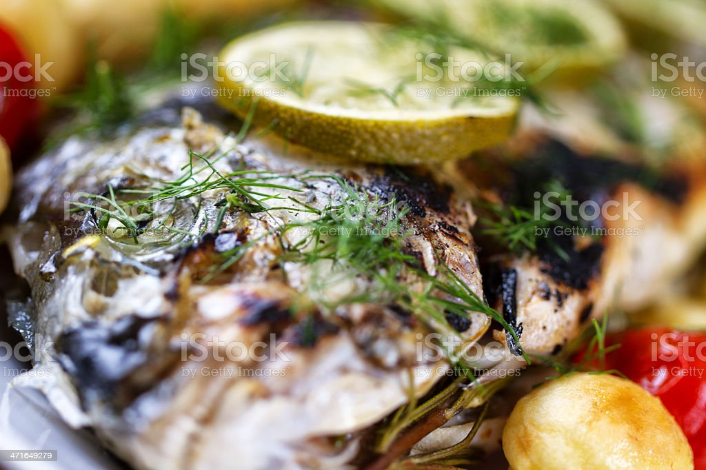 Grilled sea bream royalty-free stock photo