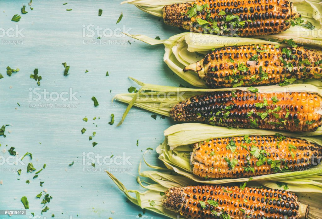 Grilled sweet corn with cilantro over blue background, copy space stock photo