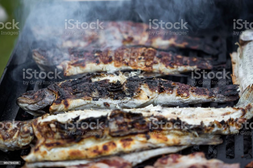 Grilled trout fish on the grill with smoke royalty-free stock photo