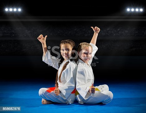 istock Grils martial arts fighters 858682976
