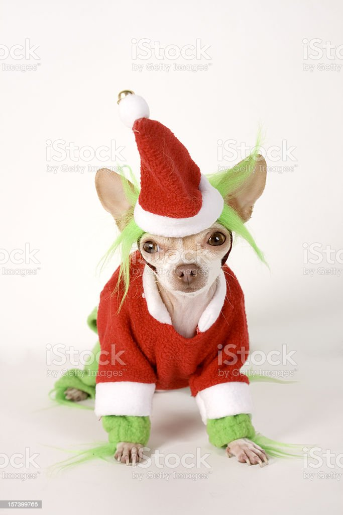 grinch stock photo