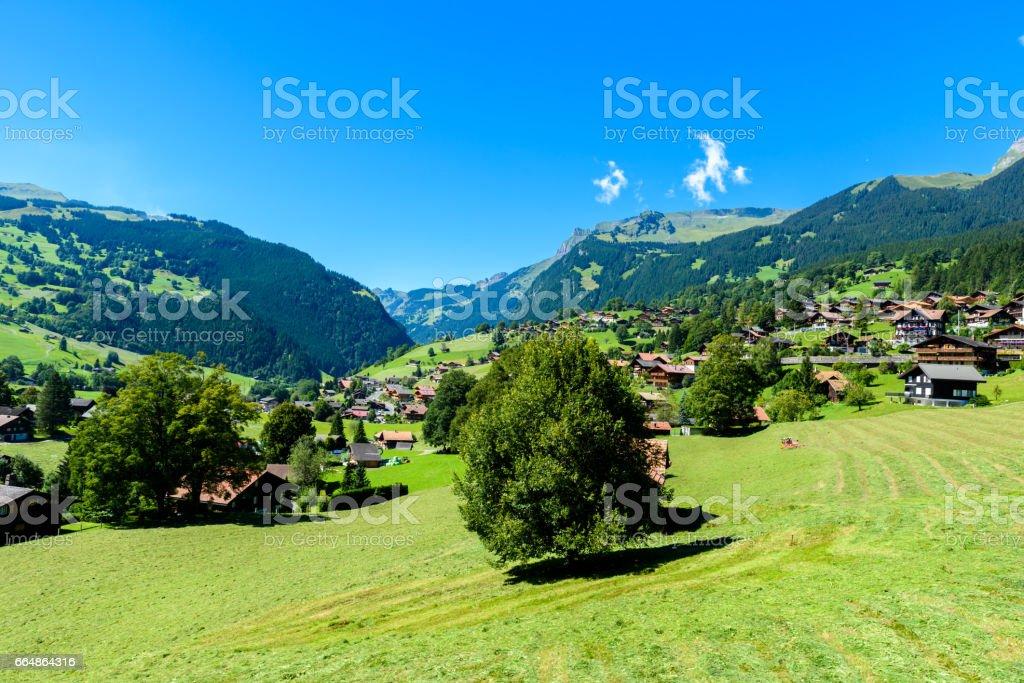 Grindelwald Beautiful Village In Mountain Scenery Switzerland Stock