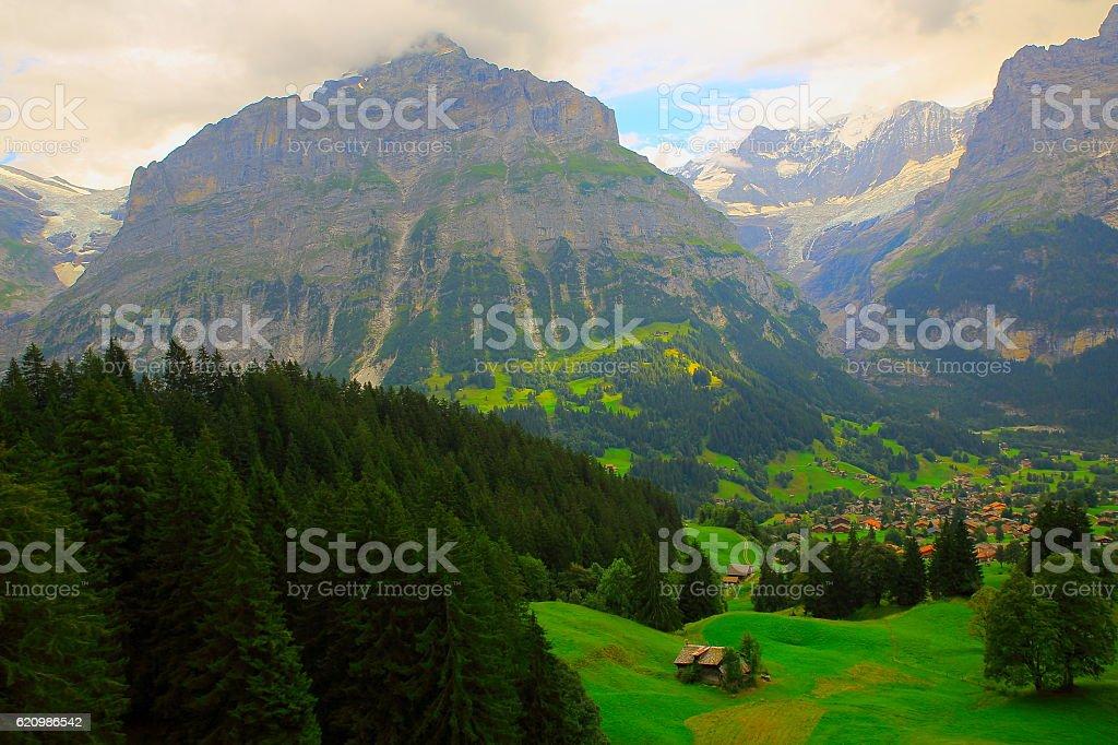 Grindelwald idyllic alpine village panorama and Wetterhorn Landscape, Swiss Alps foto royalty-free