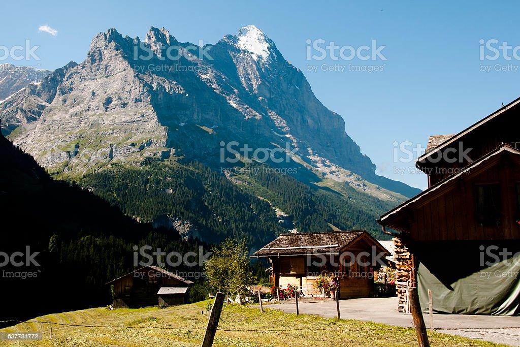 Grindelwald-Schweiz – Foto