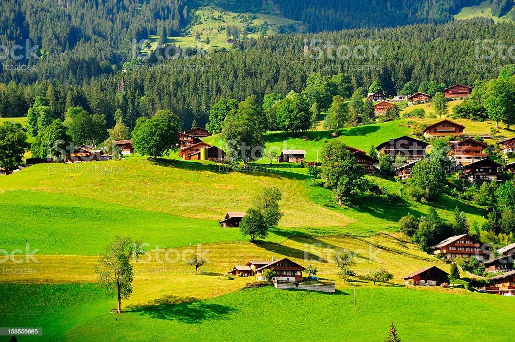 Grindelwald Village in Berner Oberland, Switzerland royalty-free stock photo