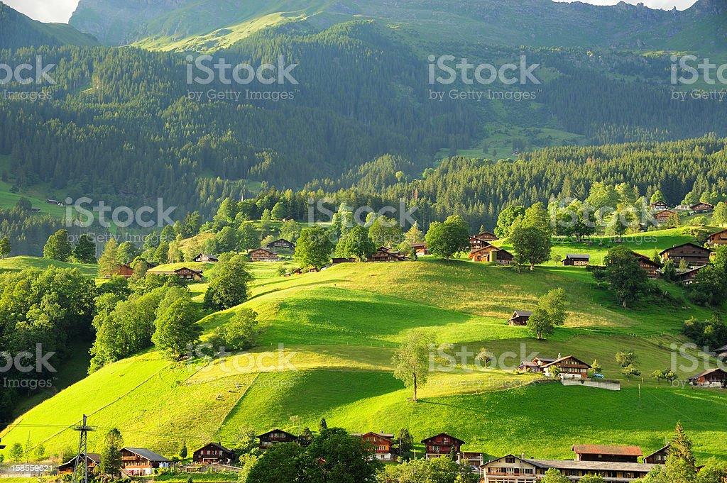 그린데발트 마을 Berner 오버란트, Switzerland royalty-free 스톡 사진