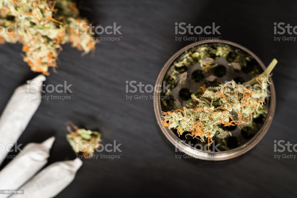 Grinder for chopping weed cannabis and a flower of marijuana on use THC and CBD royalty-free stock photo