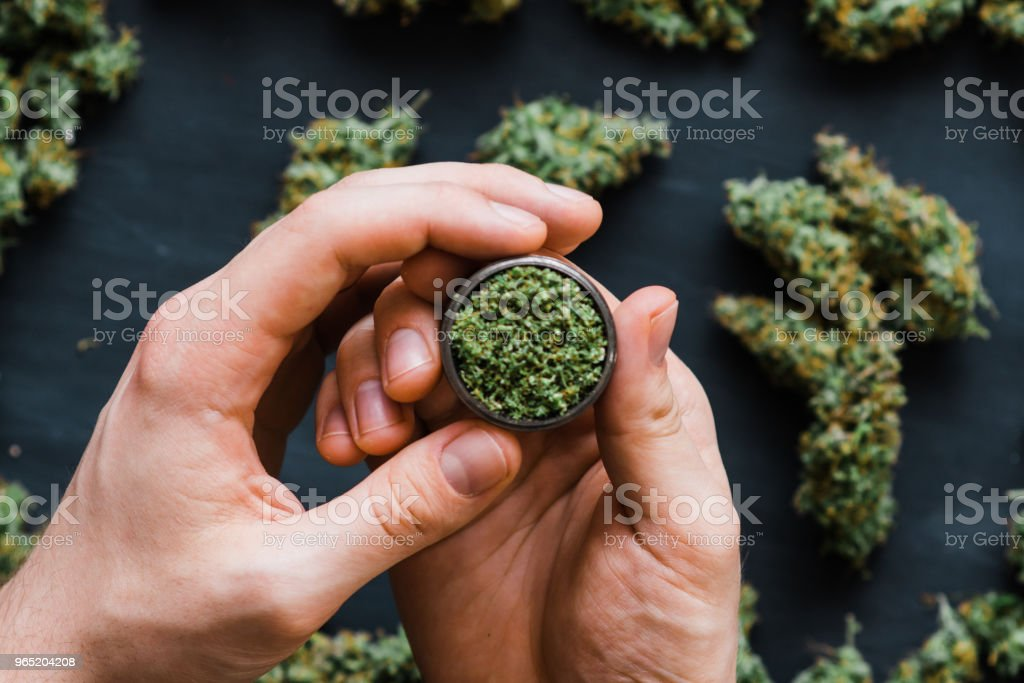 Grinder in man hand. A lot of marijuana, lighter, joint , fresh buds of cannabis many weed. Copy spase Copy-space royalty-free stock photo