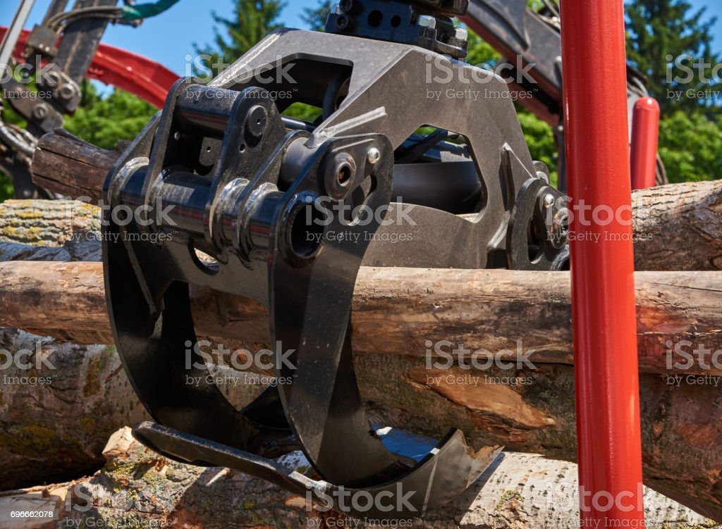 Gripper for logs on a forklift in natural light stock photo
