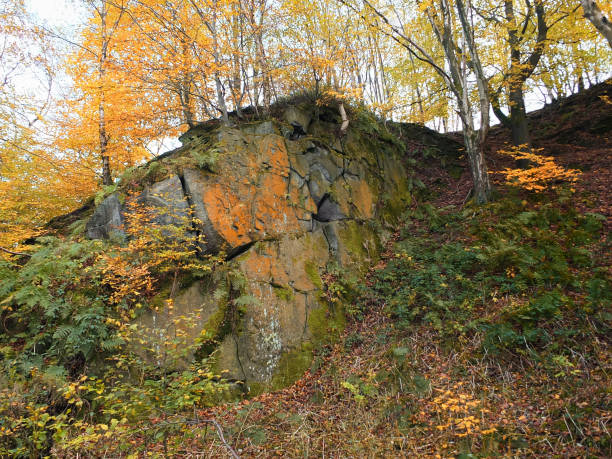 gritstone outcrop in pennine valley autumn forest in crownest woods near hebden bridge in calderdale west yorkshire - outcrop stock pictures, royalty-free photos & images