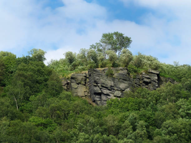 gritstone outcrop surrounded by forest in the pennine landscape near hebden bridge, west yorkshire. - outcrop stock pictures, royalty-free photos & images