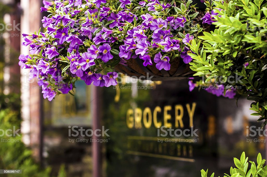 Groceries and Flowers stock photo