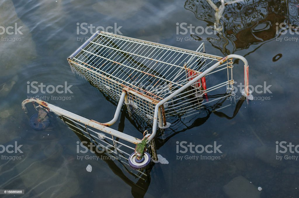 Grocery store shopping cart sits in clear water stock photo