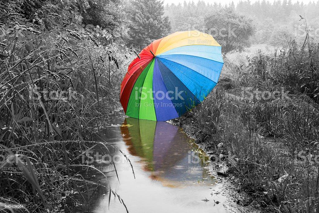 großer bunter Regenschirm spiegelt sich in einer Pfütze stock photo