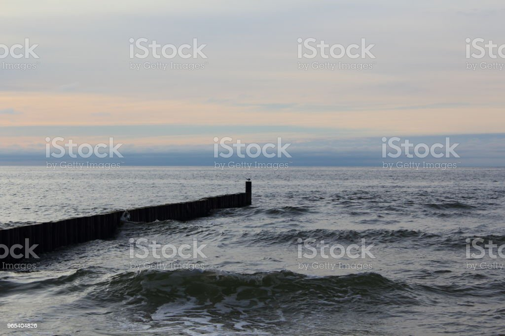 groin at at the baltic sea beach of ustronie morskie, poland in the evening twilight royalty-free stock photo