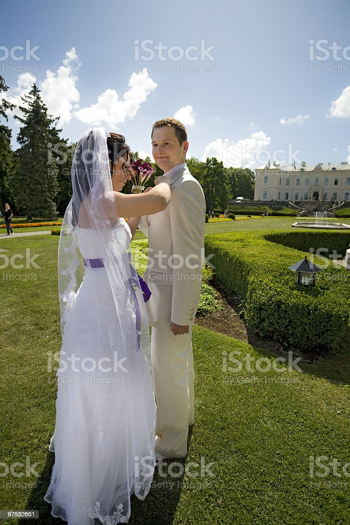 Groom and bride in luxury background royalty-free stock photo
