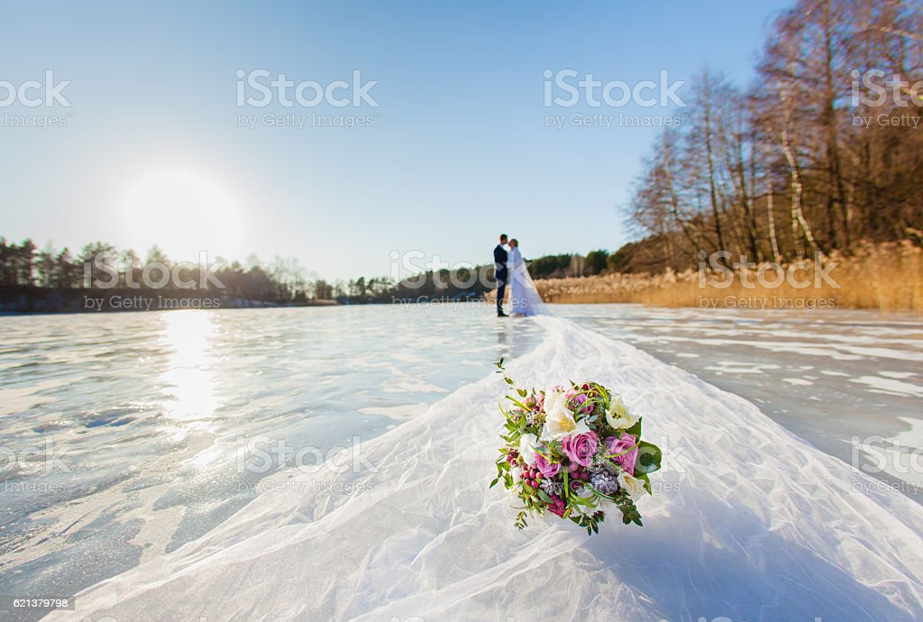 Groom and bride with long bridal veil stock photo