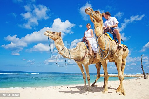 istock Groom and his bride riding camels on the beach 531011069