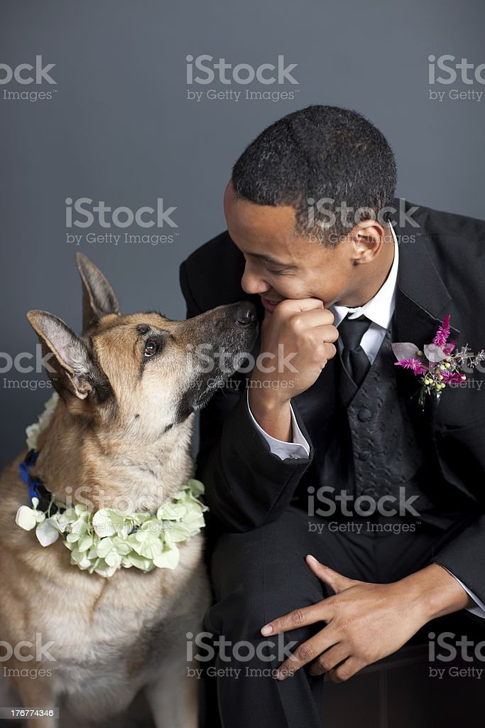 Groom and His German Shepherd Dog royalty-free stock photo
