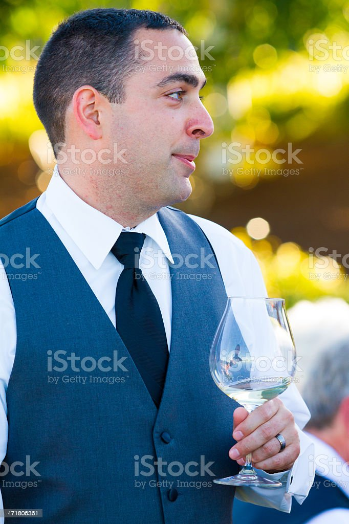 Groom During Toasts royalty-free stock photo