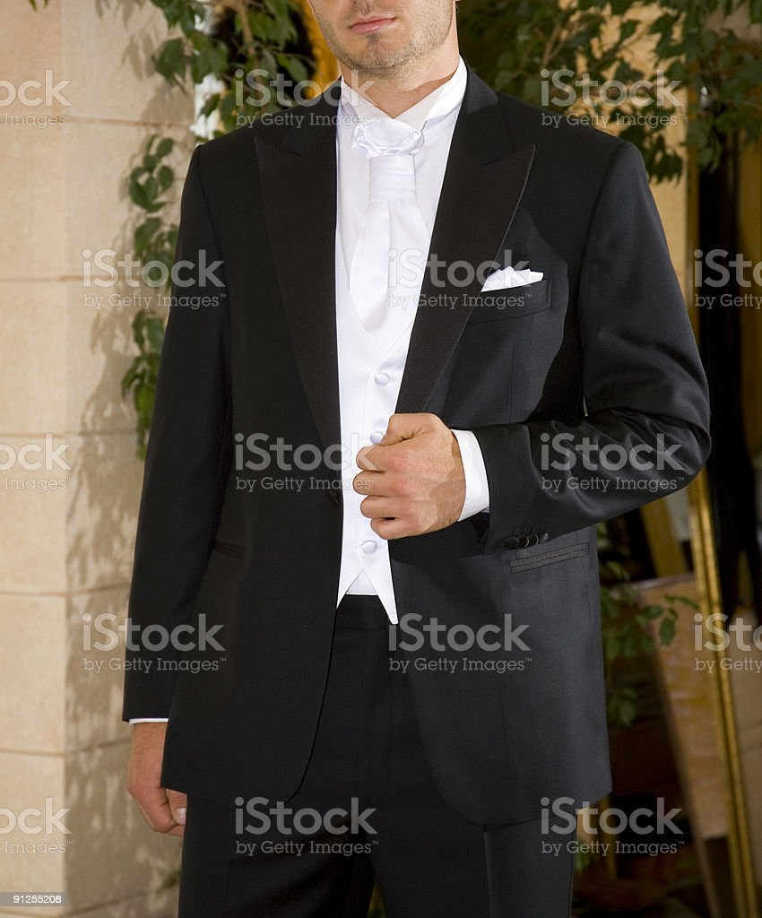 groom royalty-free stock photo