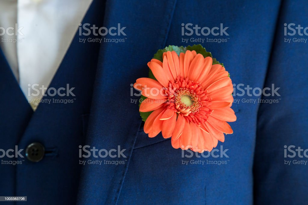 Groom with chrysanthemum boutonniere on wedding stock photo