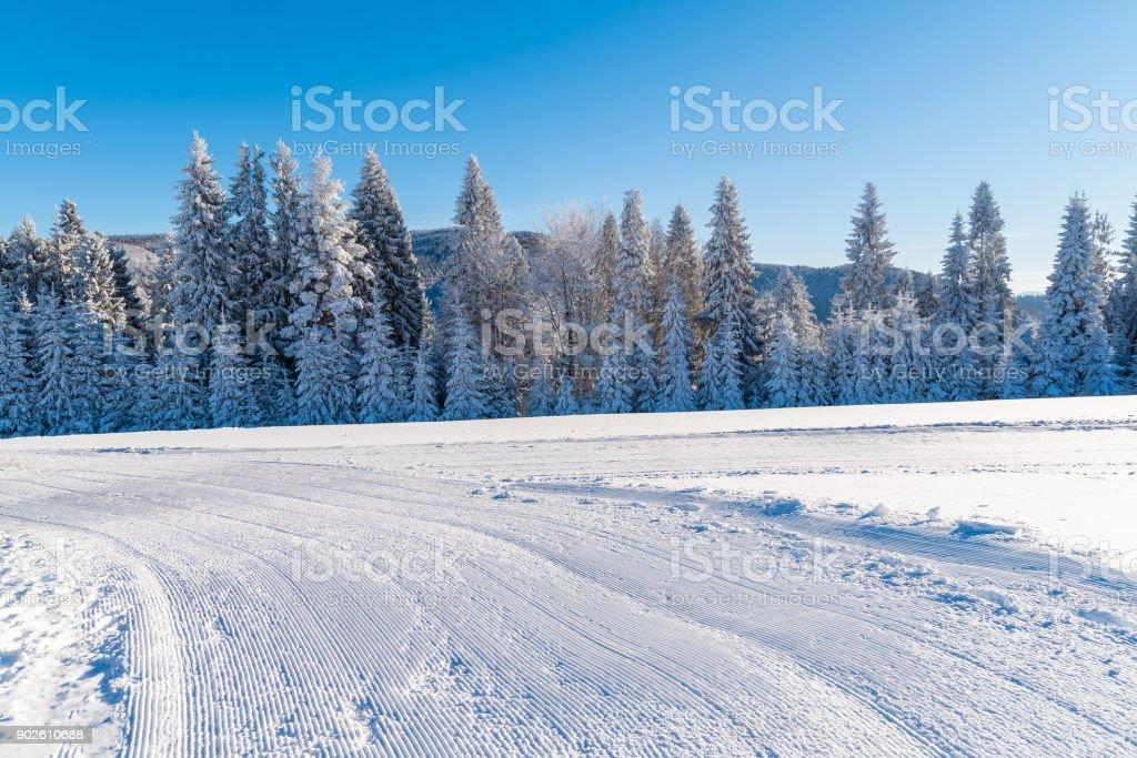 Groomed ski run in winter landscape of Beskid Sadecki Mountains on sunny day, Poland stock photo