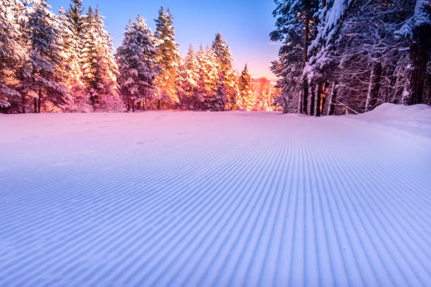 groomed snow and forest ski slope at dawn stock photo