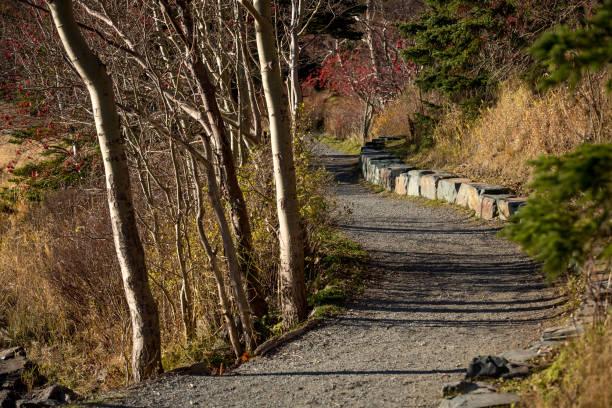 Sentier pédestre damée à Saint-Jean, Terre-Neuve et Labrador - Photo