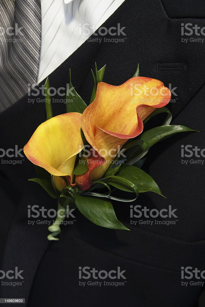 groom's corsage royalty-free stock photo