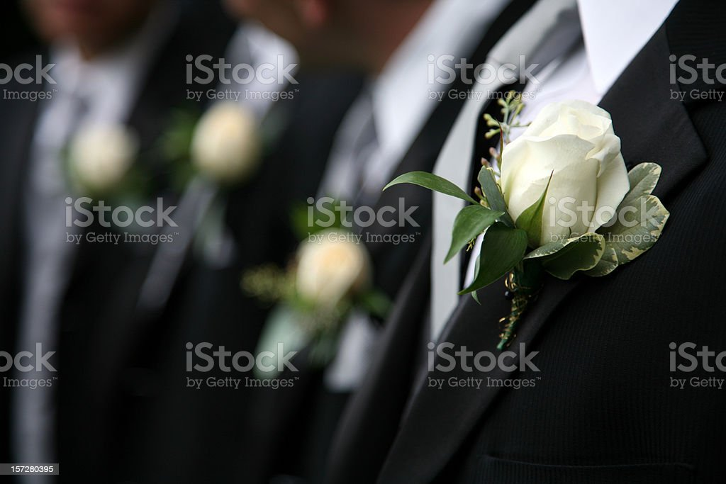 Groomsmen in black wearing white rose boutonnieres stock photo