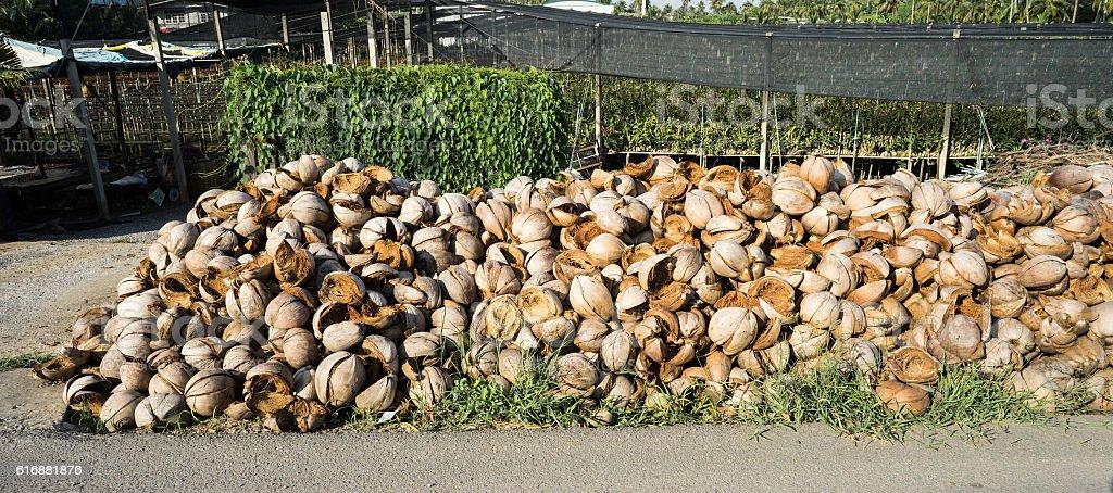 grop of coconut peel stock photo