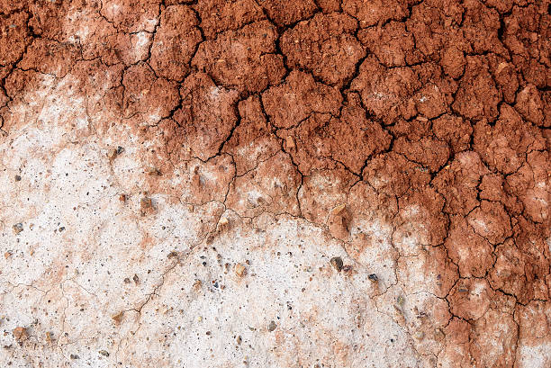 ground cracks texture background Abstract background with texture of brown and white colors of dry ground with cracks and stones on the mountain slopes steppe stock pictures, royalty-free photos & images