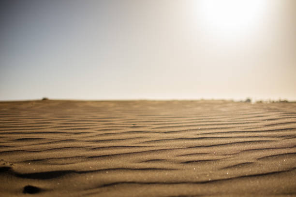 ground level view of desert sand at sunset with sun hitting hard from above giving a sense warm and hot wth nobody stock photo