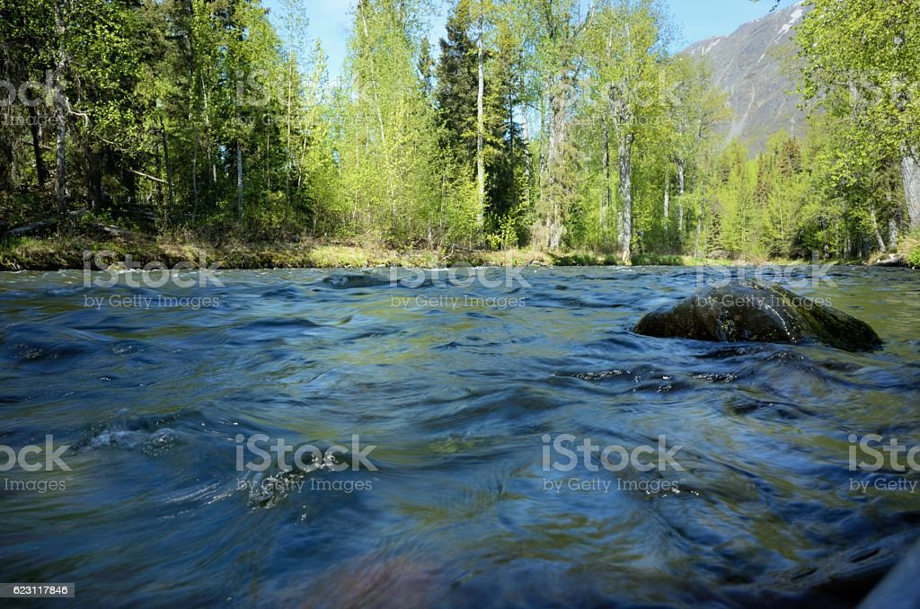 Ground level view of Russian river in Alaska stock photo