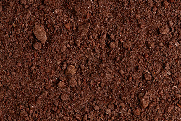 Ground Texture. Top View of a Dark Ground Surface. stock photo