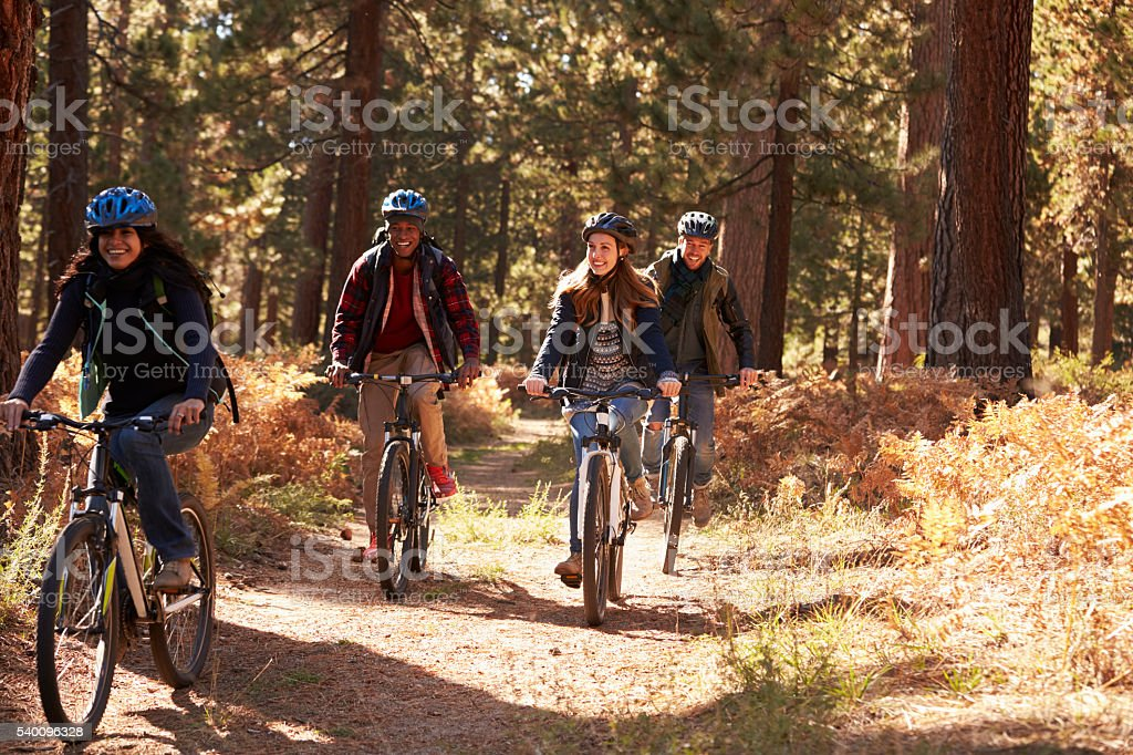 Group four friends in helmets riding bikes on a forest stock photo