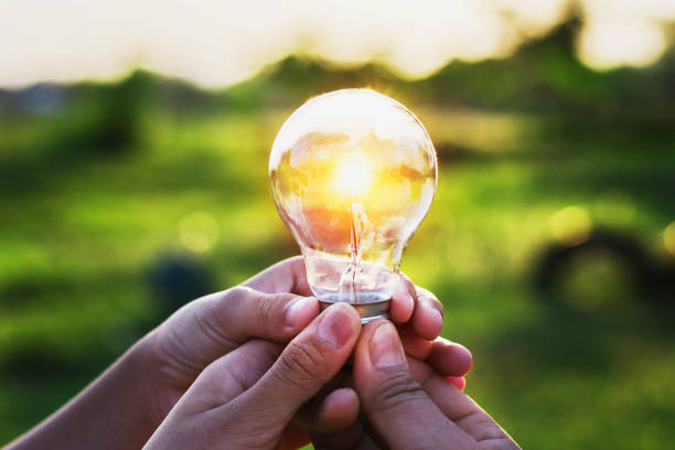 Hand Of Person Holding Light Bulb And Tree Idea Success Pictures Images Stock Photos