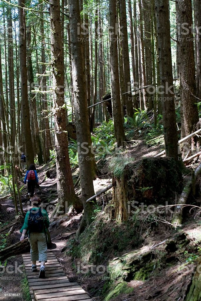 Group Hike royalty-free stock photo