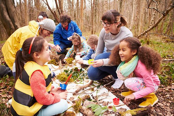 group looking for minibeasts at activity centre - bos spelen stockfoto's en -beelden