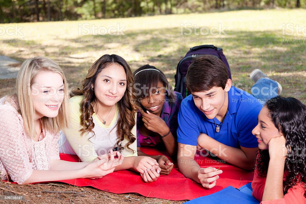 Group multi-ethnic teenage friends hang out on school campus, park. royalty-free stock photo