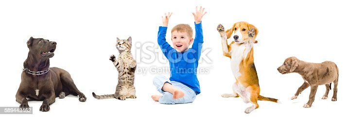 istock Group of a cheerful pets and child together 589443462